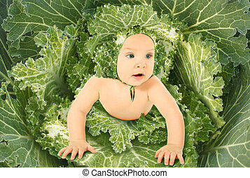 baby in blown green leaves streaked with white ornamental...