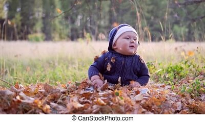 Baby in the forest. Falling autumn leaves.