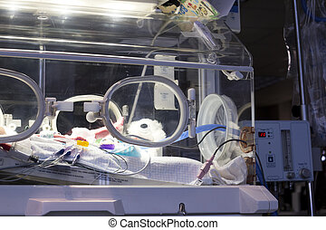 Baby isolete incubator - A newborn in an incubator. in the...