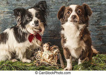 Baby Jesus and two dogs