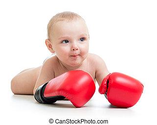 baby jongen, bokser, vrijstaand, op wit