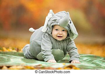 baby junge fuchs kost m angezogene junge park fuchs herbst kost m angezogene baby. Black Bedroom Furniture Sets. Home Design Ideas