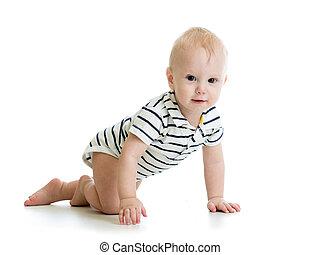 baby- junge, freigestellt, krabbelnd