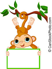 Baby monkey on a tree holding blank