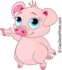Baby piglet pointing - Cute baby piglet pointing (showing,...