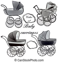 Baby plams hand drawn in engraved style
