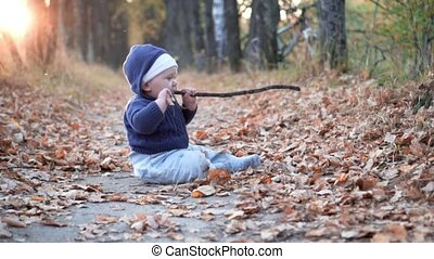 Baby playing with stick in the forest. Falling autumn leaves.