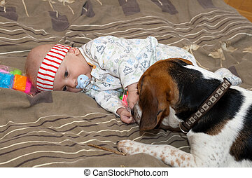 Baby plays with a dog