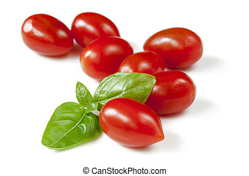 Baby Plum Tomatoes with Basil Isolated - Baby plum tomatoes...