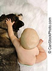 Baby Reaching Hand and Petting Hugging German Shepherd Dog