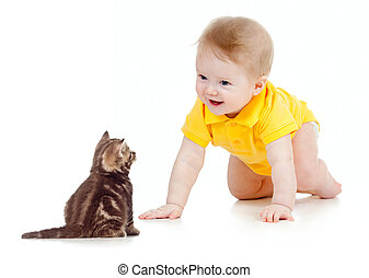 baby, rolig, ålning, katt