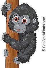 baby, schattig, gorilla, boom klimmen