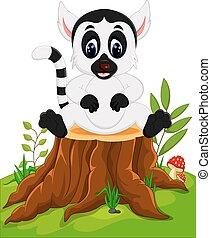 baby, schattig, lemur