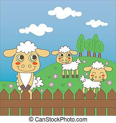 Baby Sheep Grazing - Three little cute sheep grazing on the ...