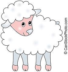Illustration of sheep.