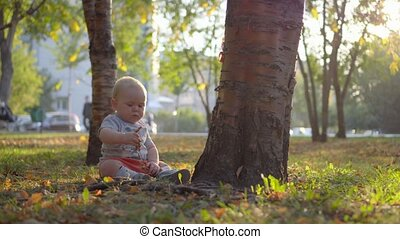Baby sitting on the lawn near the tree and playing with grass. Sunset light. Autumn park.
