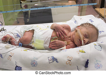 Baby sleeping - Premature baby sleeping in ICU only one day ...