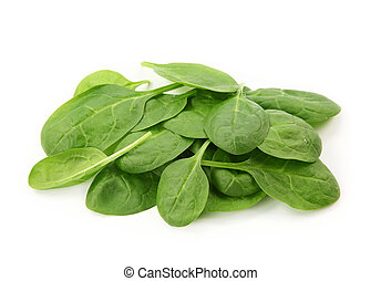 Baby spinach leaves isolated on white background