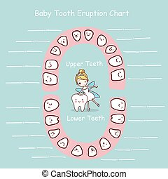 Baby tooth chart eruption record