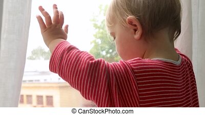 Baby touching window at home - Crop charming baby touching...