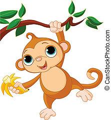 baby, træ, abe