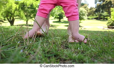 Baby walking on mothers feet on the grass on a sunny day