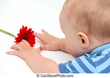 baby with flower on white bed