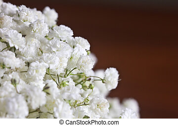Baby's breath flowers on brown background