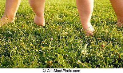 baby's cute feet - small baby's cute feet on the summer...