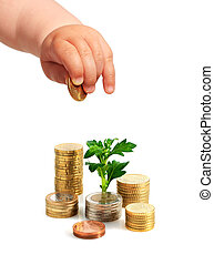 Baby's hand, coins and plant.