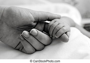Baby's hand holding mother's finger, close-up shot