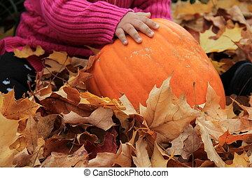 Baby's pudgy hands on pumpkin