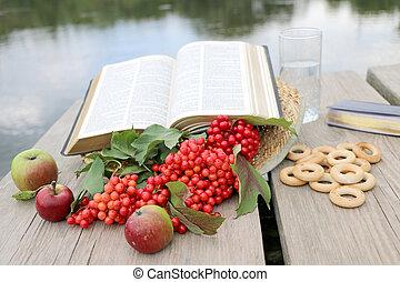 bacche, bibbia, libro, rosso, viburnum