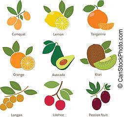 bacche, frutte