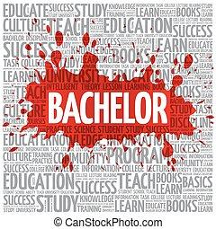Bachelor word cloud, education concept