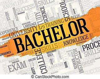 Bachelor word cloud, education concept background