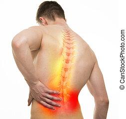 Back Injury Male Anatomy - Studio shot with 3D illustration isolated on white
