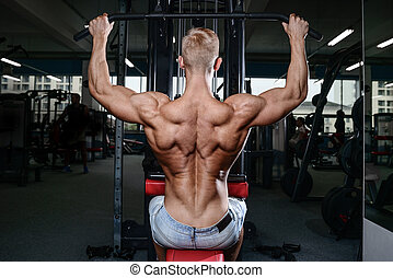 back muscle man's back Male bodybuilder flexing his back