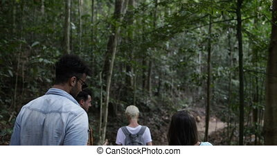 Back Rear View Of Group Of Friends Tourists On Hike Trekking Forest Trail Together Backpackers Travelling In Woods
