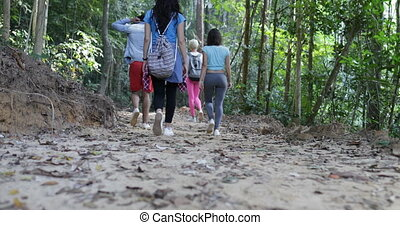 Back rear View Of Group Of Tourists Trekking On Forest Path Walking Through Trees Together On Hike People During Adventure Vacation