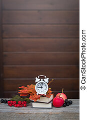 Back to school Alarm clock, maple leaves, apples, ashberries, September 1 concept