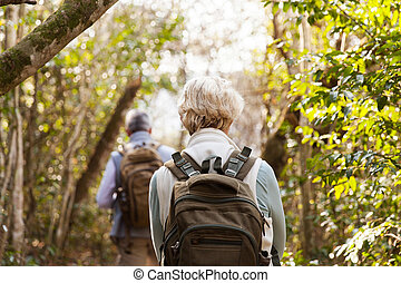 back view of couple hiking in forest