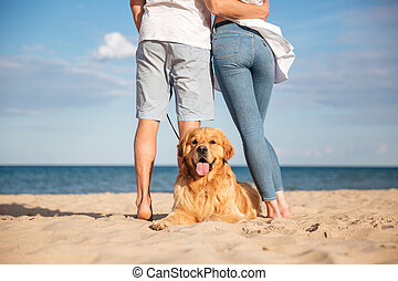Back view of dog lying on beach near young couple