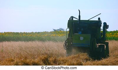 Back view of modern combine harvester. Crop field, blue sky...