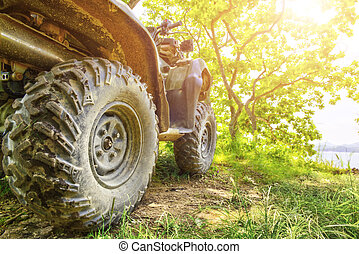 Back view of quad bike deep in the forest road.