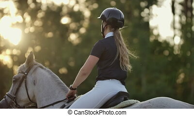 Back view of rider on a horse. Back view of a rider with a...