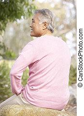 Back View Of Senior Man In Park