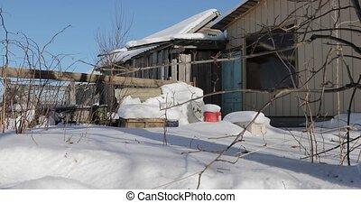 back yard in a village in winter.