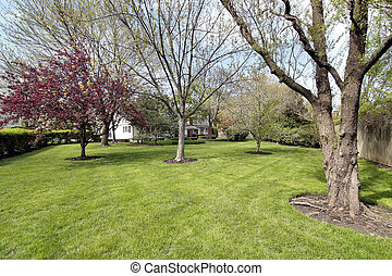 Back yard of luxury home in spring