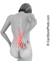 backache illustration - 3d rendered illustration of a female...